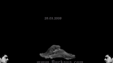 29.03.2008